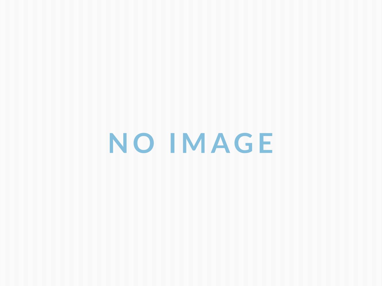 かわいい木製サラダボウルのセット